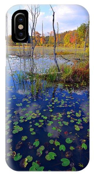 Beaver Marsh In Autumn IPhone Case