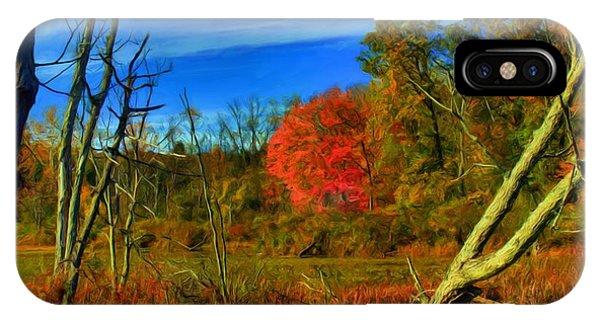 Beaver Marsh In October IPhone Case