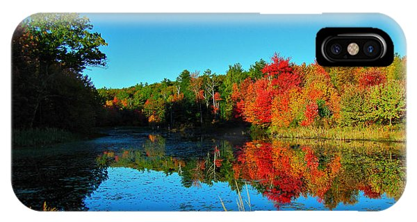 Beaver Pond Foliage IPhone Case