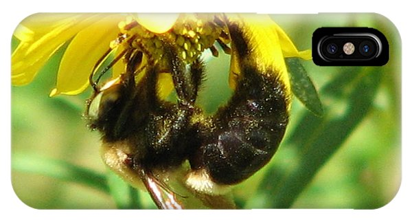 Bee All In IPhone Case