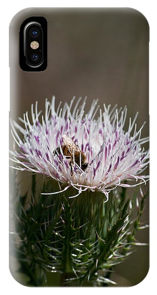 Bee And Pollination Pla 508 IPhone Case
