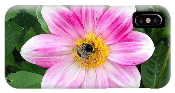 Bee Enjoying Flower IPhone Case