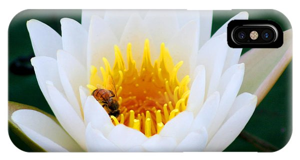 Bee In A Lily  IPhone Case