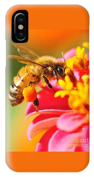 Bee Laden With Pollen IPhone Case