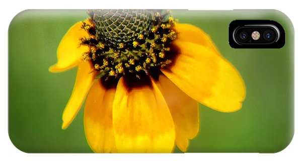 Bee My Coneflower IPhone Case