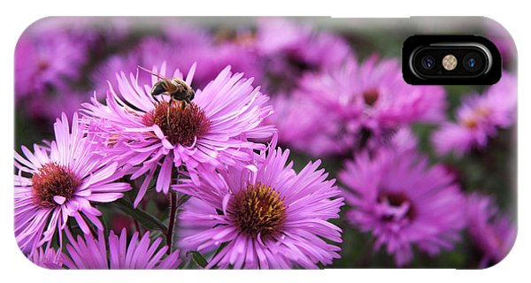 IPhone Case featuring the photograph Bee On A Daisy by Susan Leonard