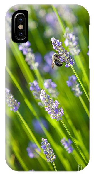 Pollination iPhone Case - Bee On A Lavender Flower by Diane Diederich