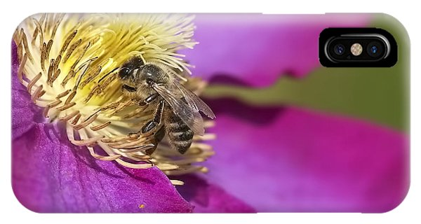 Honeybee iPhone X Case - Bee On Clematis by Sharon Talson