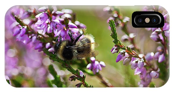 Bee On Heather IPhone Case