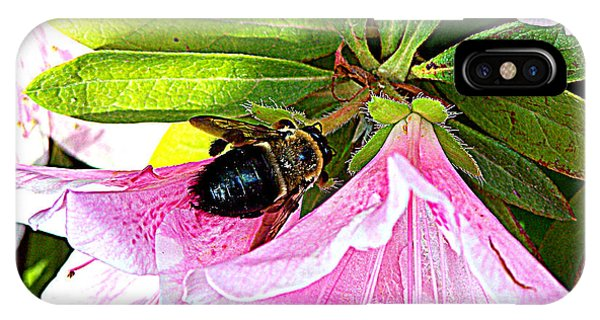 Bee On  Pink Azalea IPhone Case