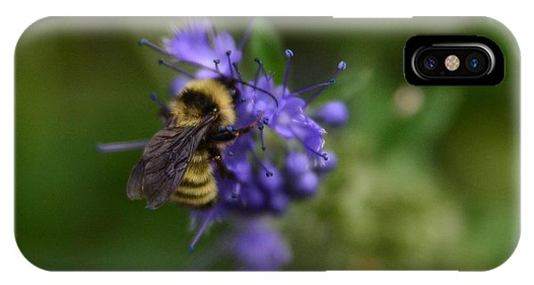 Bee On Spirea IPhone Case