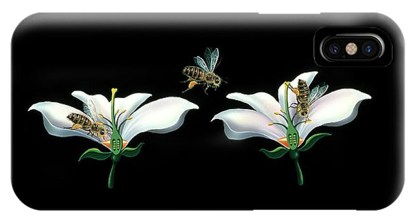 Pollination iPhone Case - Bee Pollination by Lena Untidt/bonnier Publications/science Photo Library