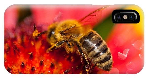 Bee Time IPhone Case