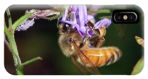 Bee With Flower IPhone Case