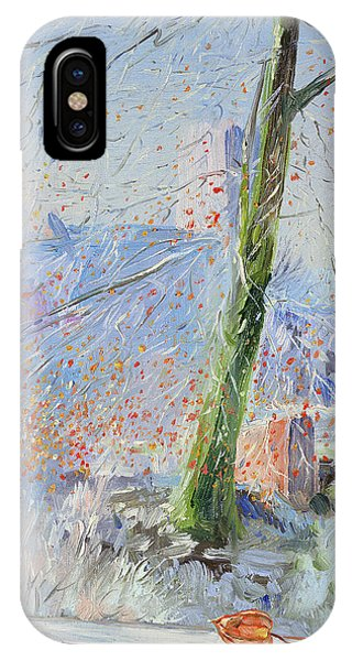 Frost Glass iPhone Case - Beech Tree And Haw Frost by Timothy Easton