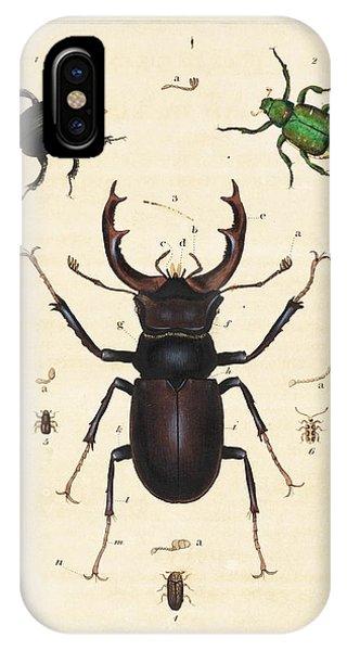 Minotaur iPhone Case - Beetles by King's College London