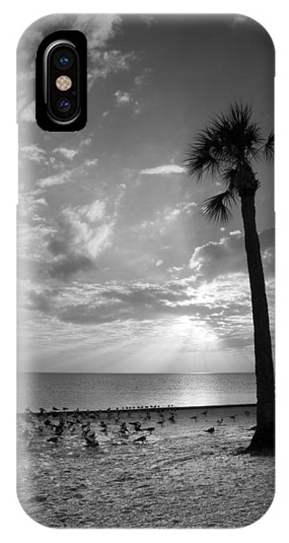 Before Sunset IPhone Case
