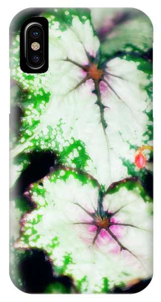 Begonia Leaves (begonia 'uncle Remus') Phone Case by Maria Mosolova/science Photo Library