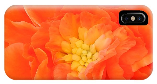 Begonia IPhone Case