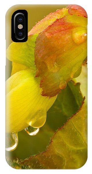 Begonia Raindrops  IPhone Case