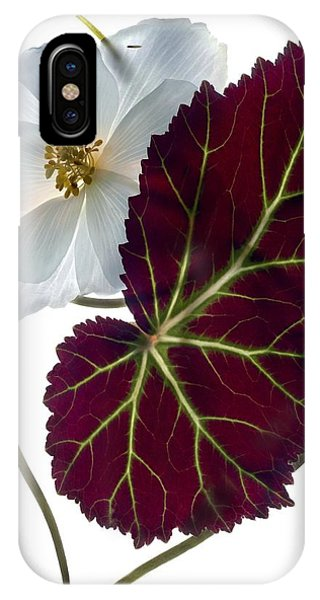 Floral Arrangement iPhone Case - Begonia White by Julia McLemore