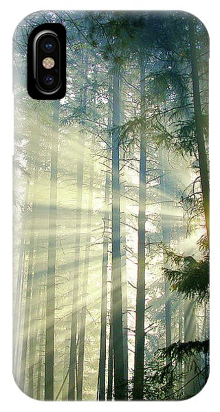 Behold The Light In The Fall Forest IPhone Case