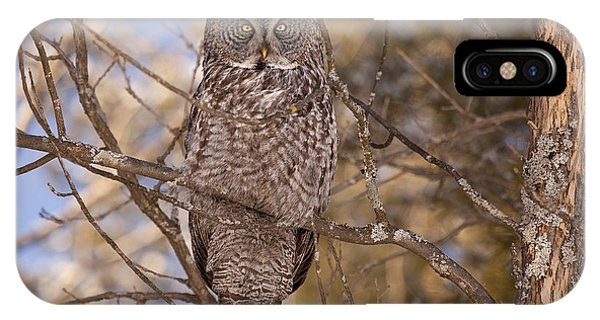 Being Observed IPhone Case