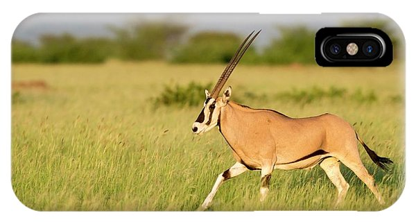 Beisa Oryx Running In Awash National Park Phone Case by Tony Camacho