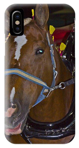 Belgian Draft Horse IPhone Case