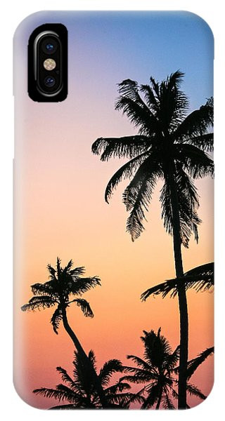Belize Palms IPhone Case