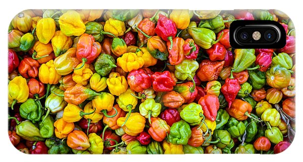 Belize Peppers II IPhone Case
