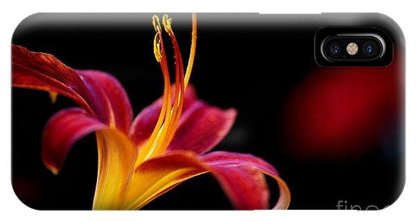 calyx flowers case