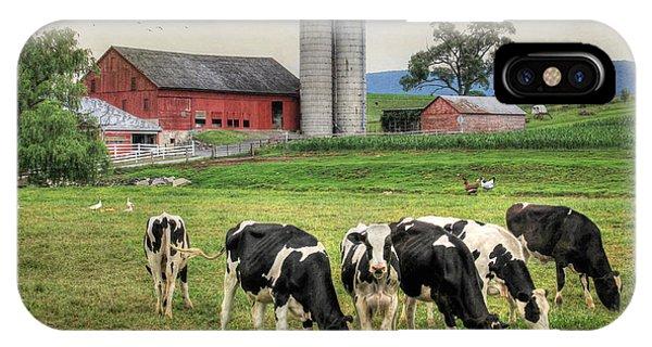 Barnyard Animals iPhone Case - Belleville Cows by Lori Deiter