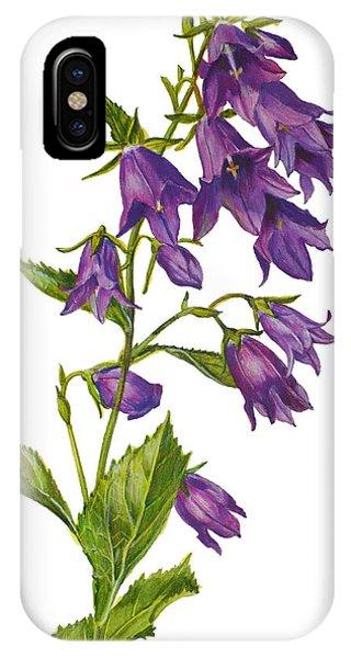 Bellflower - Campanula IPhone Case