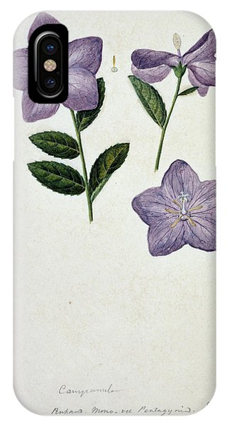 Bellflower Phone Case by Natural History Museum, London/science Photo Library