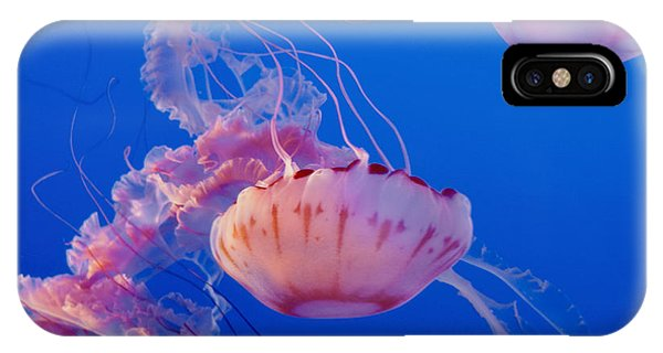 Below The Surface 3 IPhone Case