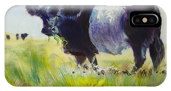Belted Galloway Cow IPhone Case