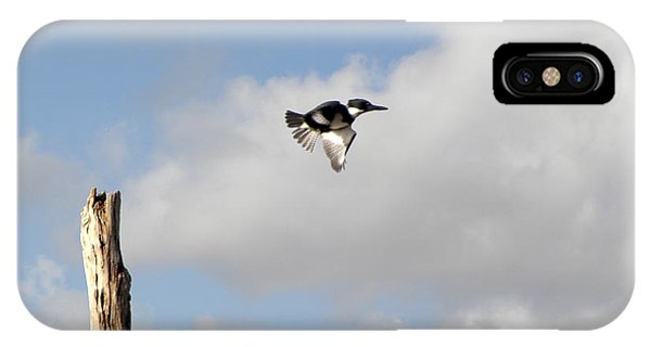 Belted Kingfisher In Flight IPhone Case