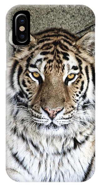 Tiger iPhone Case - Bengal Tiger Vertical Portrait by Tom Mc Nemar