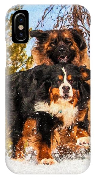 Bernese Mountain Dog iPhone Case - Bernese Mountain Dog And Leonberger Winter Fun by Gary Whitton