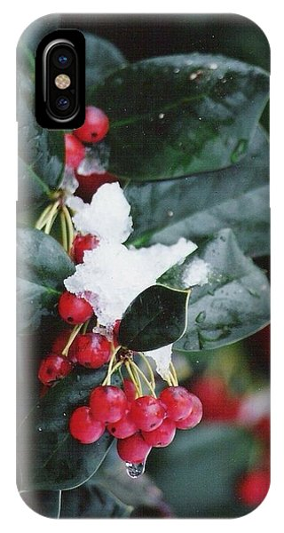 Berries In The Snow IPhone Case