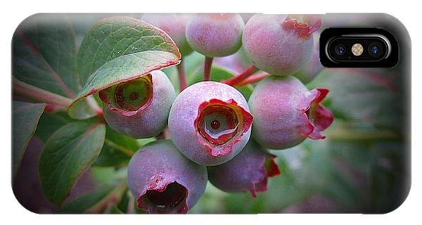 Berry Unripe IPhone Case