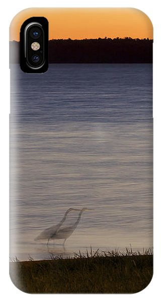 Beside Myself - Great Blue Heron At Sunset IPhone Case