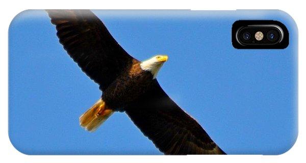 Best Bald Eagle On Blue IPhone Case