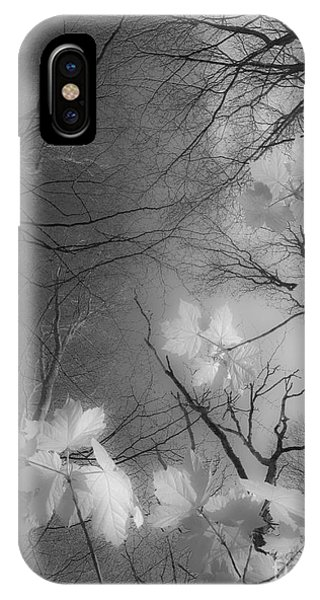 Between Black And White-02 IPhone Case