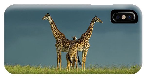 Pose iPhone Case - Between The Two by Massimo Mei