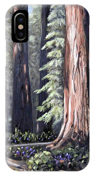 Beyond The Path IPhone Case