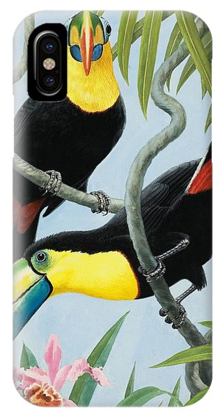 Big-beaked Birds IPhone Case
