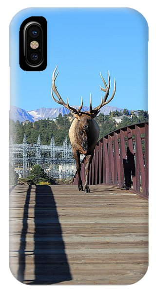 Big Bull On The Bridge IPhone Case