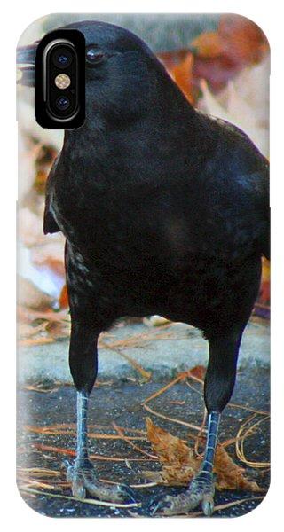 Big Daddy Crow Leaf Picker IPhone Case